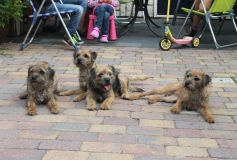 Pup familie bezoek 2015-281-min