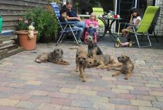 Pup familie bezoek 2015-282-min